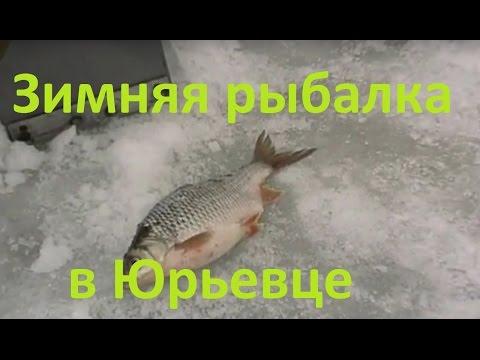 Диалоги о рыбалке - 210- Зимняя рыбалка в Юрьевце, ловля белой рыбы.