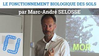 Marc André SELOSSE - Fonctionnement Biologique des Sols