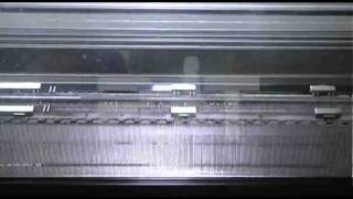 Arlitex Snc - Curiosando - Protagonisti del Tempo