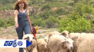 Chuyện về gái Tây và bầy cừu   VTC