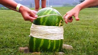 WATERMELON VS 2,000 RUBBER BANDS