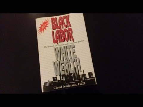 "Book Discussion...""Black Labor, White Wealth"" by Dr Claud Anderson Pt1"