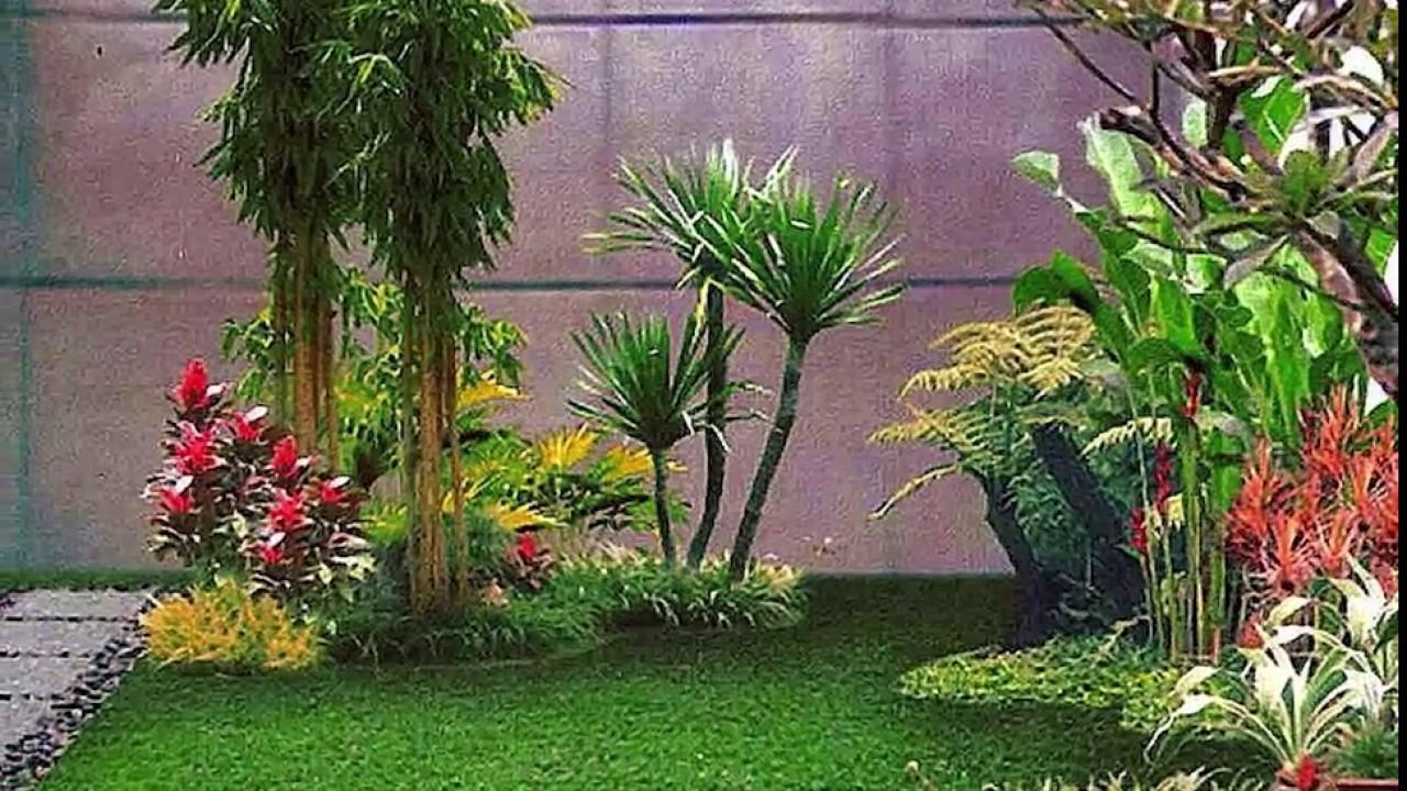 20 Desain Taman Minimalis Didalam Rumah YouTube