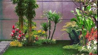 20 Desain Taman Minimalis Didalam Rumah