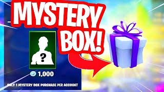 WOULD YOU BUY THIS MYSTERY BOX WITH RANDOM SKIN in FORTNITE!!