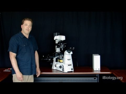 Microscopy: Disassembling a Nikon Ti Eclipse (Stephen Ross)