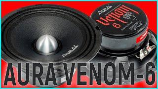 Aura Venom 6 громко, ровно, недорого, обзор эстрадных среднечастотников
