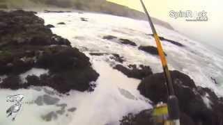 Pesca de Corvinas Chile - SpinRock Chile por N  Torrejón