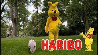 Der ARD-Markencheck: HARIBO (2017)
