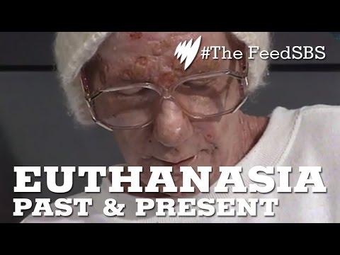 Euthanasia: Past & Present I The Feed