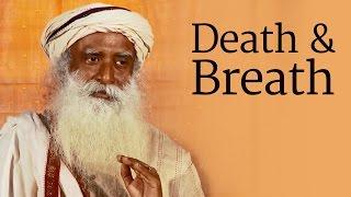 Death & Breath: The Role of the Koorma Nadi   Sadhguru