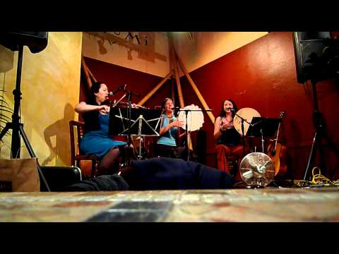 Musical Journeys with True Life Trio