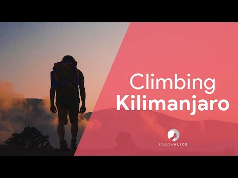 What is it really like to climb Kilimanjaro? (Lemosho route)
