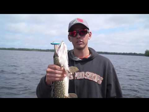Catching Pike | Kawartha Lakes