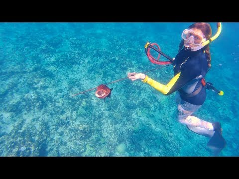 Exploring The Marshall Islands: Catching Dinner