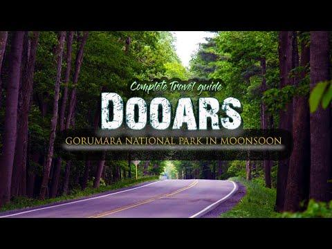 INCREDIBLE DOOARS IN MONSOON | GORUMARA NATIONAL PARK | DOOARS TRAVEL GUIDE