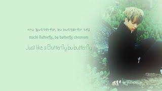 bts 방탄소년단 butterfly color coded han rom eng lyrics chords
