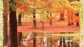 Джо Дассен -Бабье лето (L'ete indien)