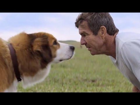 Собачья жизнь/Цель и жизнь собаки(A Dogs Purpose) 2017 - Русский трейлер