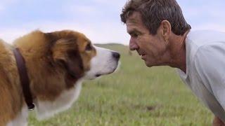 Собачья жизнь/Цель и жизнь собаки(A Dog's Purpose) 2017 - Русский трейлер