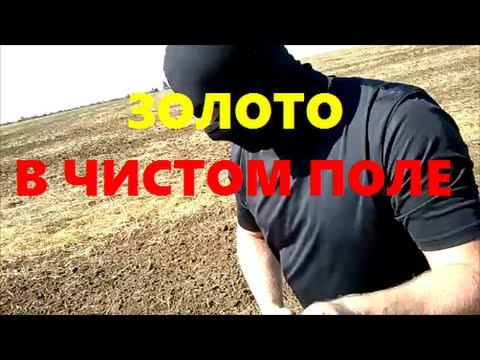 Золото в Чистом поле (2016) - youtube.