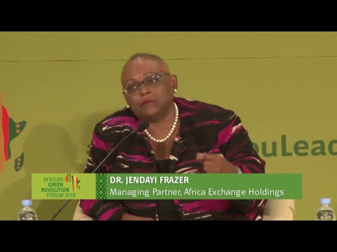 Plenary Session: The Role of State Capability – Building on Success Stories