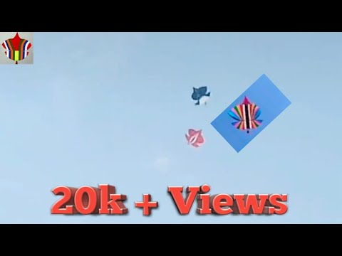 New Full HD Patang Paich In Morning Game | Kite Flying |basant 2k19 |