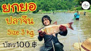 ยกยอ อ่างเก็บน้ำห้วยขุนตาล Fishing lifestyle Ep.83