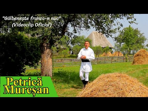 Petrica Muresan - Videoclip HD ,,Galbeneste frunza-n nuc