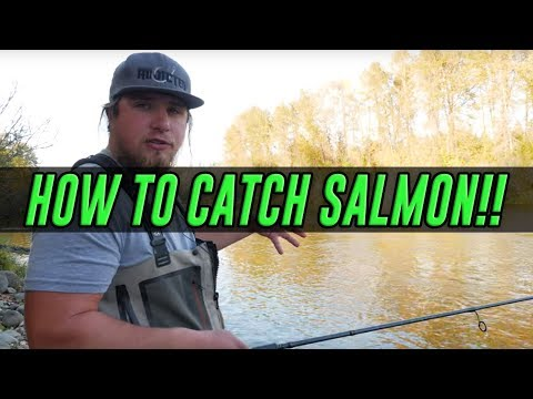 HOW TO Catch A Salmon - COMPLETE Guide To SUCCESS Salmon Fishing!