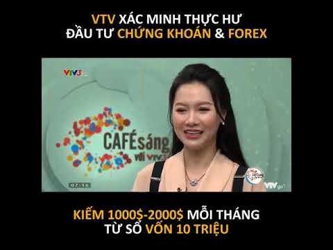 Chay tai khon forex la gi