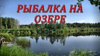 Рыбалка на озере #123