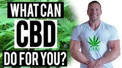 What is CBD, or Cannabidiol? | Tiger Fitness