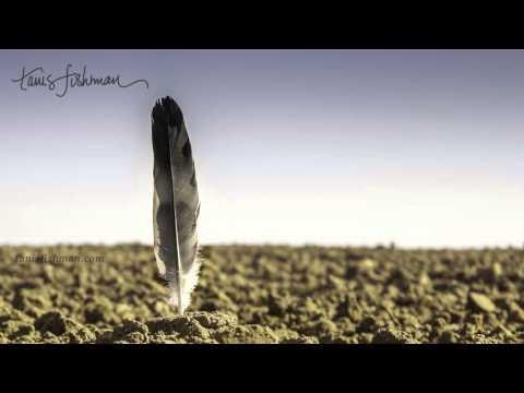 Yoga nidra -  The Feather