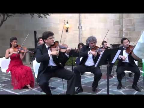 Dvorák-Serenade In E Major, Op. 22-I. Moderato-iPalpiti / Eduard Schmieder