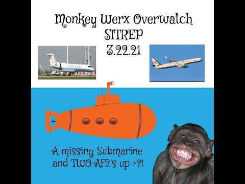 Monkey Werx Overwatch SITREP 3 22 21