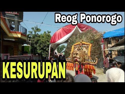 Aksi Reog Ponorogo & Jaran Kepang Asli Jawa Timur ~ Sedekah Laut Bendar Juwana Pati Mp3