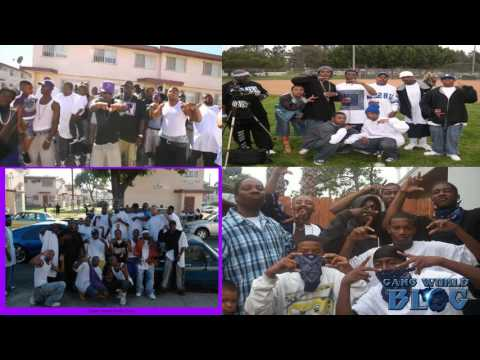 Gang Case FIles: Grape Street Crips enter and shoot up East Coast Crip Territory 2008