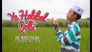 Download lagu YA HABIBAL QOLBI Voc. Sya'Ban | Syubbanul Muslimin