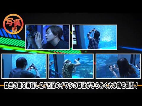 SKE48高柳明音も大興奮!Da-iCE工藤大輝・和田颯がリーダーのavex写真部が横浜でスキルアップ!【八景島編②】