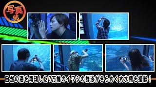 AAAの與真司郎が部長を務め、Da-iCE 工藤大輝と和田颯がリーダーとなっ...
