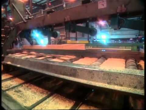 Touring a Georgia-Pacific Lumber Mill