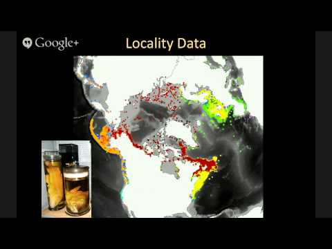 12th Global Online Seminar in Biodiversity Informatics: Uniting Niche Modeling and Comparative Ph...