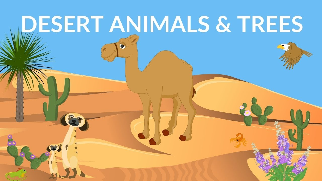 Desert Animals and Plants | Desert Ecosystem | Desert Video for kids