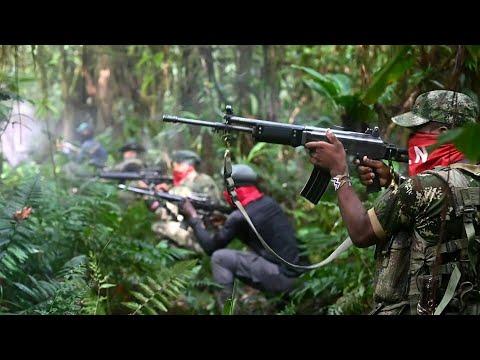 afpes: En la selva con el ELN, la última guerrilla de América   AFP