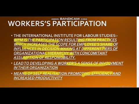 WORKER'S PARTICIPATION IN MGMT 1HRM/INDUSTRIAL RELATION