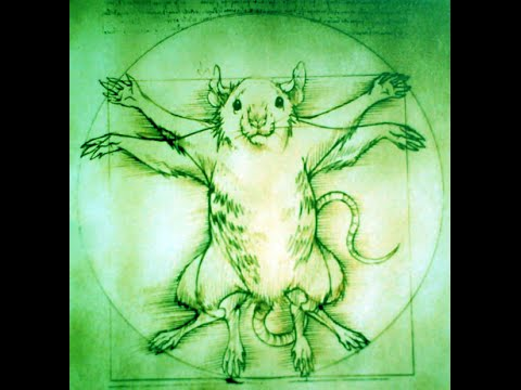 Chinese Astrology Wood Rat