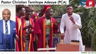 FUNNY GREETINGS by WOLI AGBA   Compilation Vol 8