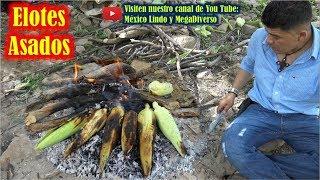 Asando unos ricos ELOTES en el cerro en la Mixteca Oaxaca 🌽 🌄 🔥