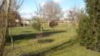 Palinges Ferme Jardin Garage Terrasse Dépendances Piscine P